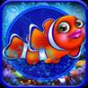 Fish Aquarium Image