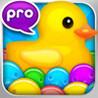 Pop Duck Pro Image