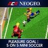 ACA NeoGeo - Pleasure Goal: 5 on 5 Mini Soccer