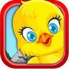 Saving The Little Chicks - Catch Falling Birds Image