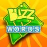 BLIZZ Words Image