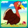 Fly Turkey, Fly!! Image