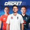 Cricket 19 Image