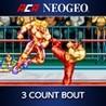 ACA NeoGeo: 3 Count Bout Image