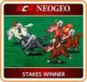 ACA NeoGeo: Stakes Winner Image