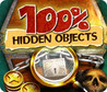 100% Hidden Objects Image