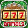 Animals Casino Image