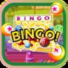 Action Family Bingo Mania - Can you Win the Jackpot Express HD 777 Image