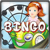 An Amusement Park USA Wild online BINGO with Theme and Water Parks Image