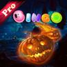 AAA - Pumpkin Bingo Pro ! Image
