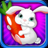 A Rabbit Fun Carrot Collect - Backyard Runner Lawn Pet - Full Version Image