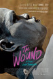 The Wound thumbnail