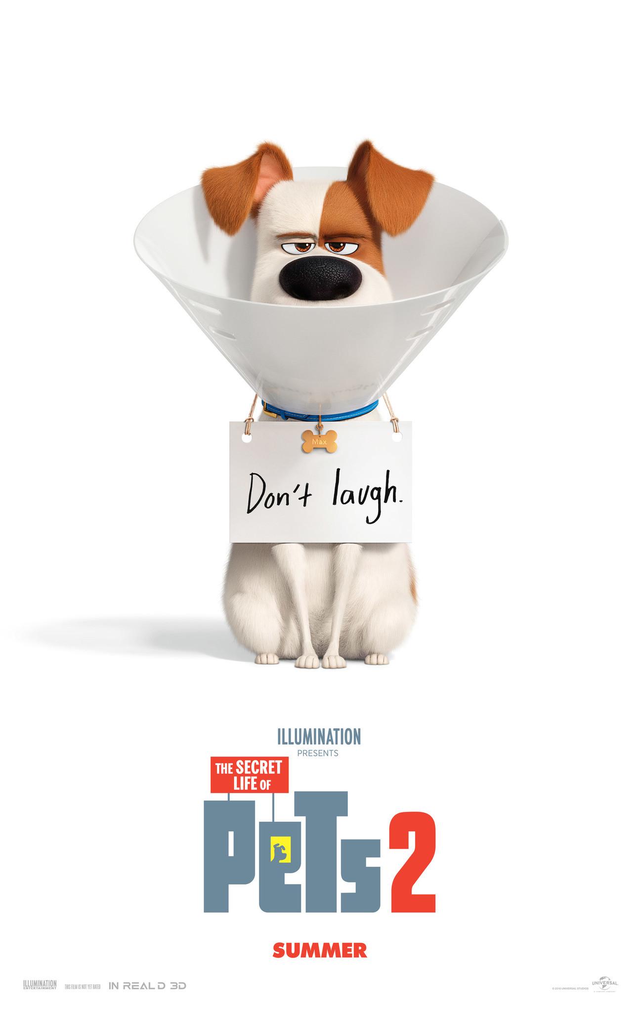 The Secret Life Of Pets 2 Reviews Metacritic
