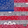 All-Amerikkkan Bada$$ Image