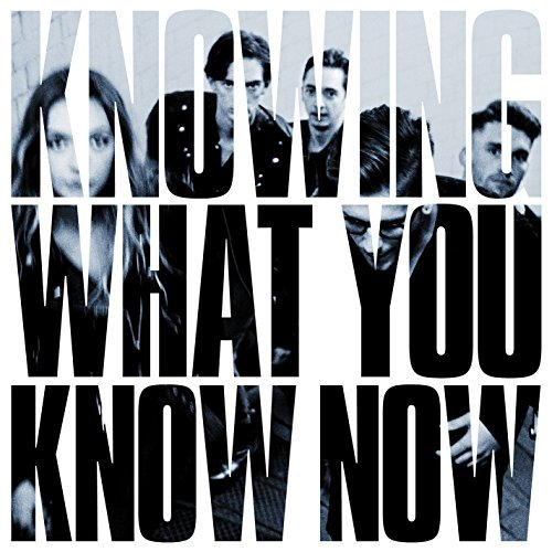 Image result for marmozets knowing what you know now