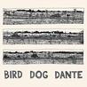 Bird Dog Dante Image