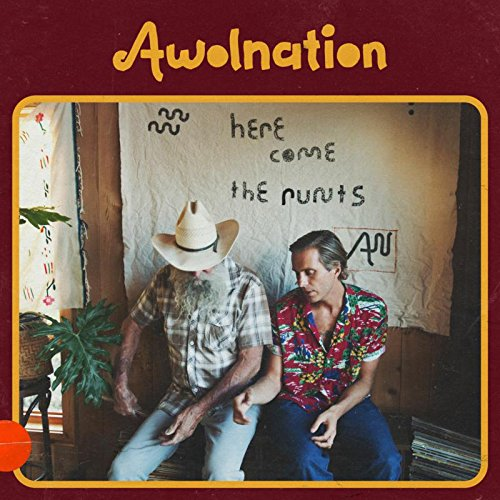 Image result for awolnation here come the runts