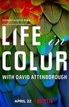 Life in Color With David Attenborough: Season 1