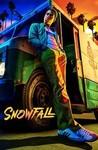 Snowfall Image