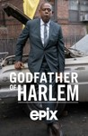 Godfather of Harlem: Season 1