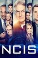 NCIS: Season 17 Product Image
