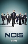 NCIS: Season 19 Image