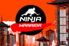 Ninja Warrior Image